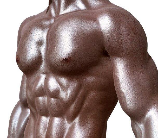 Est-ce que le Clenbutrol est efficace pour maigrir sans perdre de muscle ?